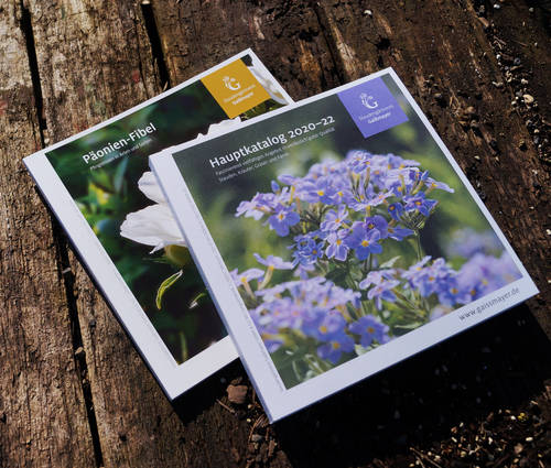 Produktbild Katalog-Kombi: Hauptkatalog und Päonien-Fibel