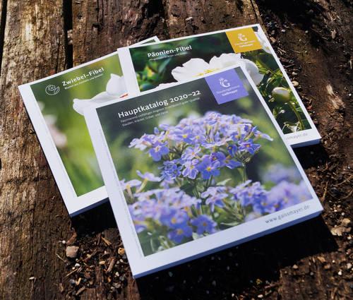 Produktbild Katalog-Trio: Hauptkatalog, Zwiebel-Fibel und Päonien-Fibel