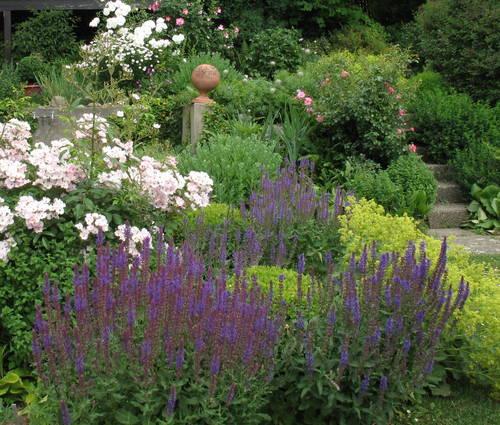 Produktbild Sonniger Vorgarten