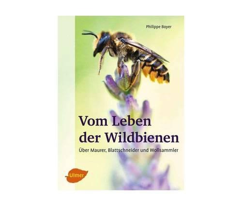 Produktbild Vom Leben der Wildbienen