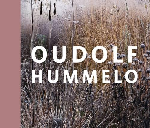 Produktbild Oudolf Hummelo