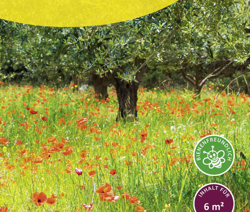 Produktbild Saatgut: Streuobstwiesenmischung