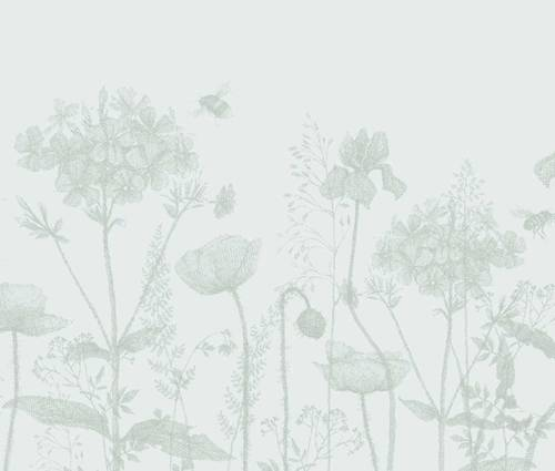 Produktbild Tiarella Hybride 'Pink Bouquet'