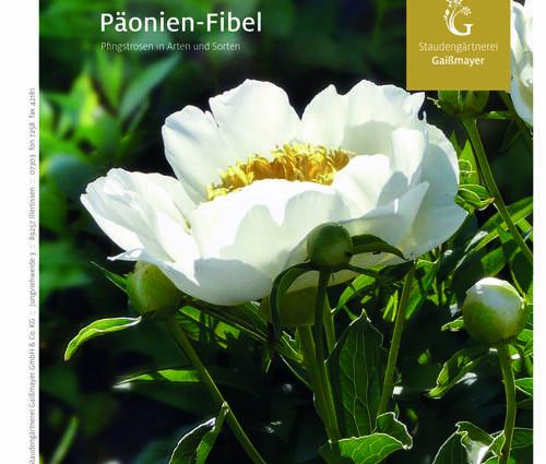 Produktbild Päonien-Fibel